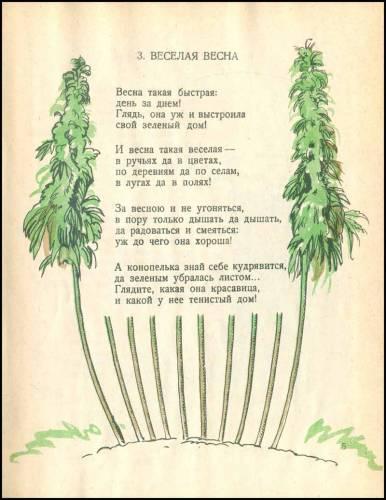 1926cannabis05
